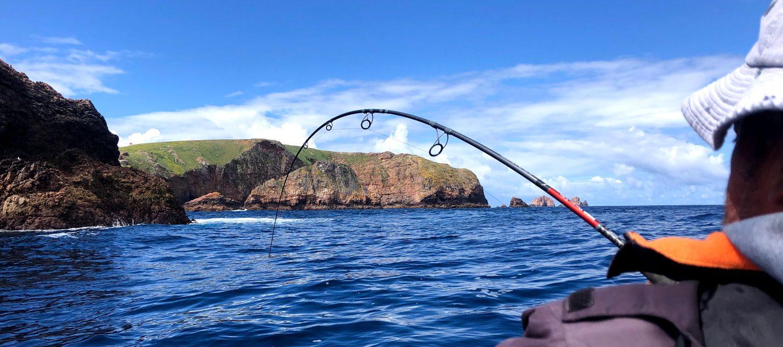 pescador à linha ao largo das Berlengas