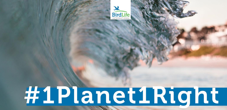 cartaz petição #1Planet1Right com onda do mar