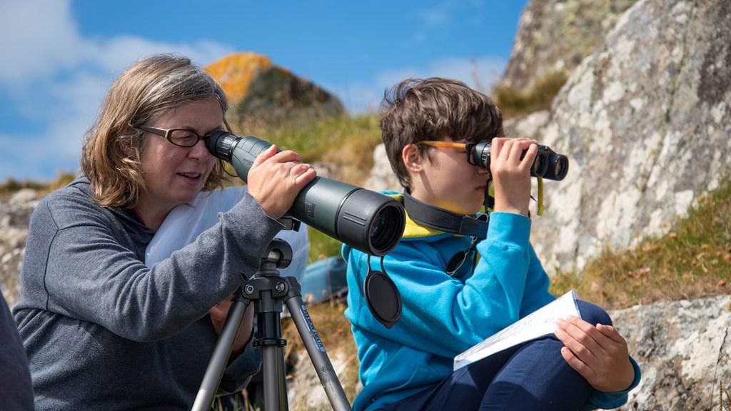 mulher com telescópio e rapaz com binóculos e bloco de notas a contar aves numa falésia