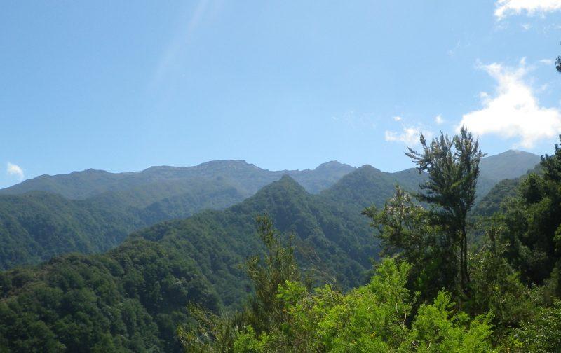 CANCELADA – Visita de Estudo à Madeira e Desertas