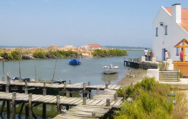 Visita de Estudo ao Estuário do Sado e Lagoa de Santo André
