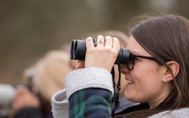 Relatórios das Visitas Ornitológicas