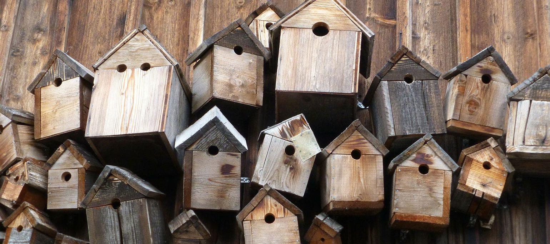 muitas caixas-ninho numa vedação