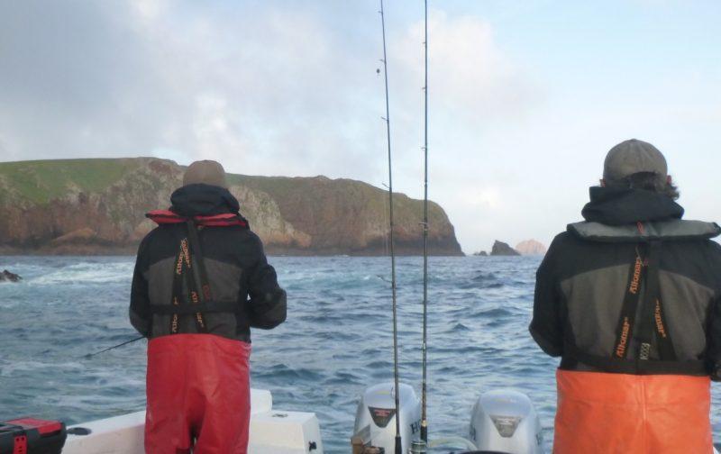 ESGOTADO – Webinar | Pesca com Futuro: como valorizar uma pesca sustentável?